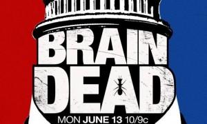 braindeadbis