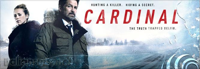 cardinaltop10serie2017