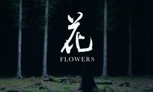 Flowers - evidenza